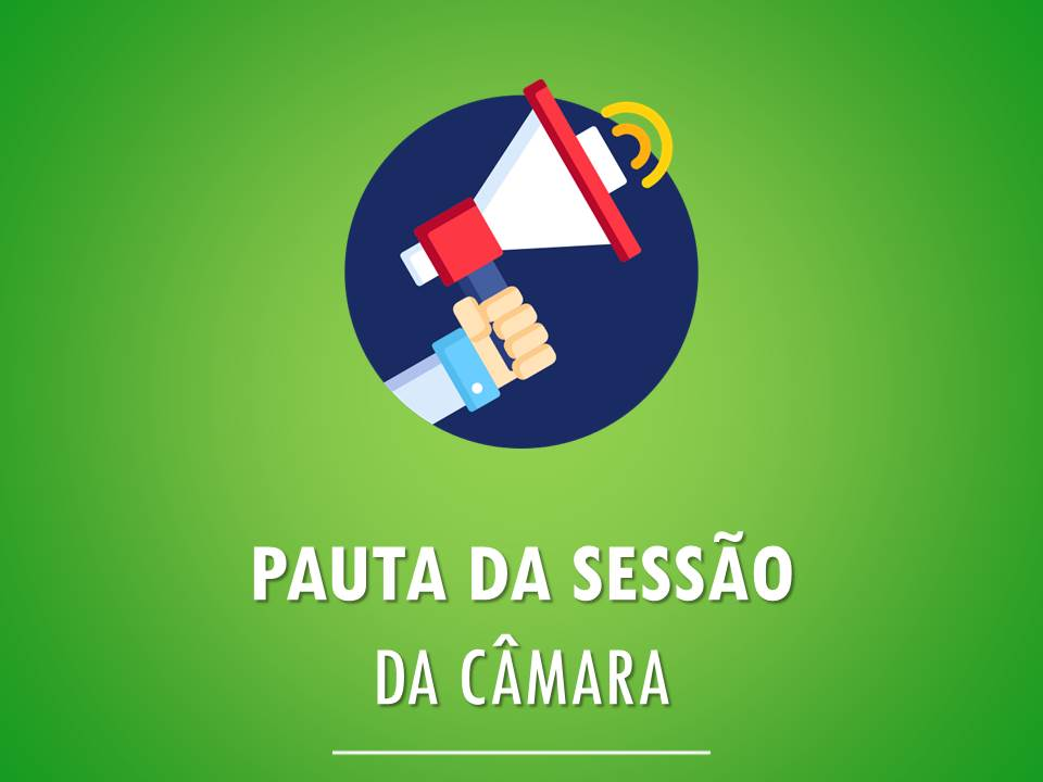 pauta-da-110-sessao-ordinaria-da-16-legislatura-do-dia-24-06-2019